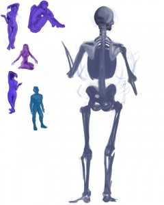 Anatomy Attempt 1