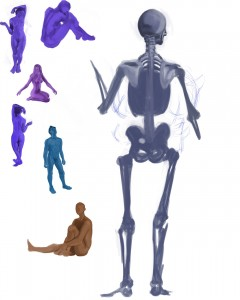 Anatomy Attempt 3
