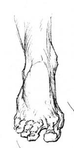 Bridgman Sample 4
